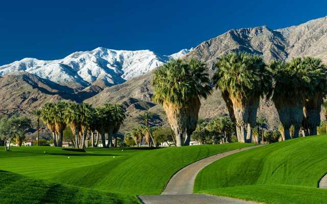 A view of a tee at Indian Canyons Golf Resort.
