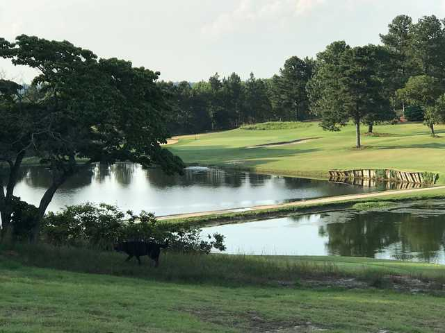 A view over the water from Hyland Golf Club.