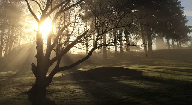 A sunny day view of a hole at Glendoveer Golf Course.