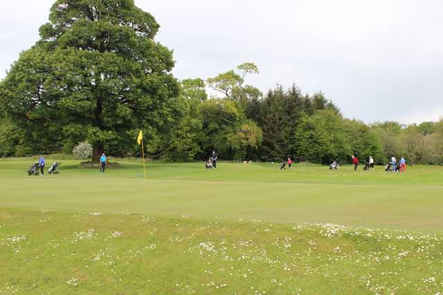 A view of a hole at Castlerea Golf Club.