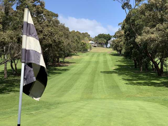 View from a fairway at Cammeray Golf Club