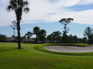 A view of hole #4 at Wedgefield Golf and Country Club