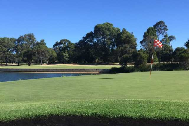 A view of a green with water in background at Collier Park Golf Club.