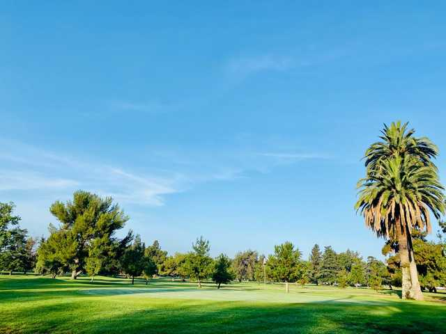 View of a green at Altadena Golf Course.