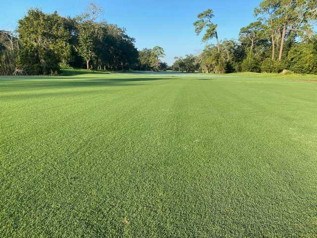 A view from Blue Cypress Golf Club.
