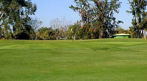 A view of a green at Miami Springs Golf & Country Club