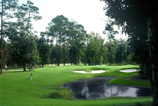 A view of a hole at Arcadian Shores Golf Club