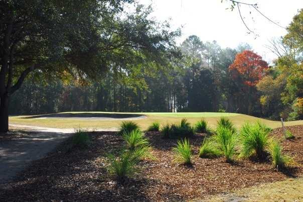 A view of a green protected by a bunker at Lady's Island Country Club