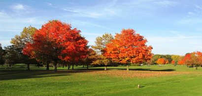 A fall view from Wedgewood Golf Club