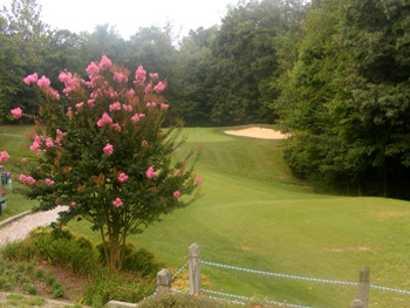 A view from Lake Ridge Park Golf & Marina