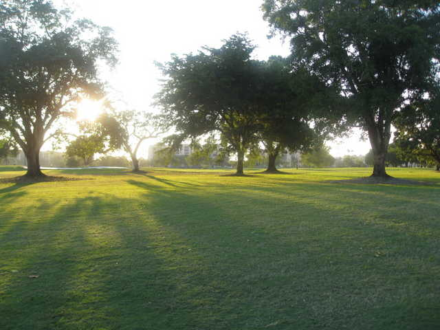 A sunny view from Marina Lake Golf Course