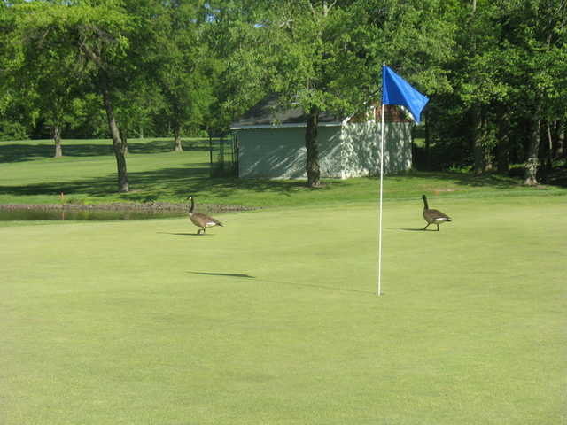 A view of the 18th hole at South Shore Golf Course