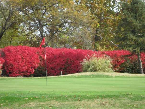 A view of the 18th green at Championship Course from Rolling Hills Golf Club