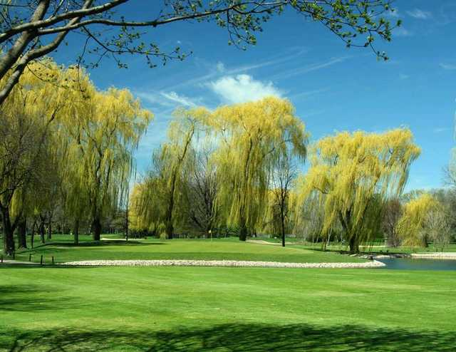 A view of a green surrounded by water at Old Orchard Country Club