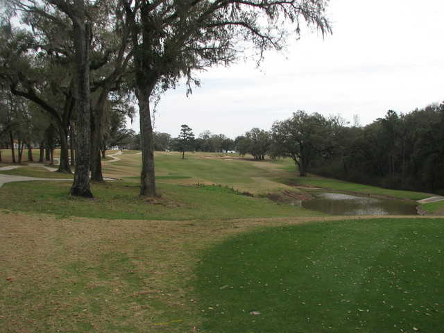 SouthWood Golf Club No. 15