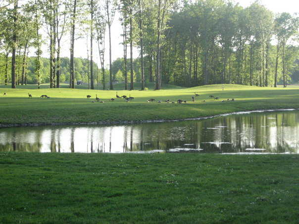 A view from Sweetbriar course at Sweetbriar Golf & Pro Shop