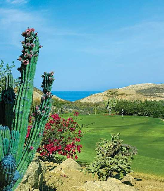 A view of a green at Arroyo Golf Course from One&Only Palmilla Golf Club