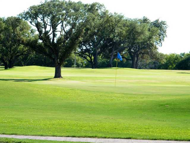 A sunny view of green at Pleasanton Country Club