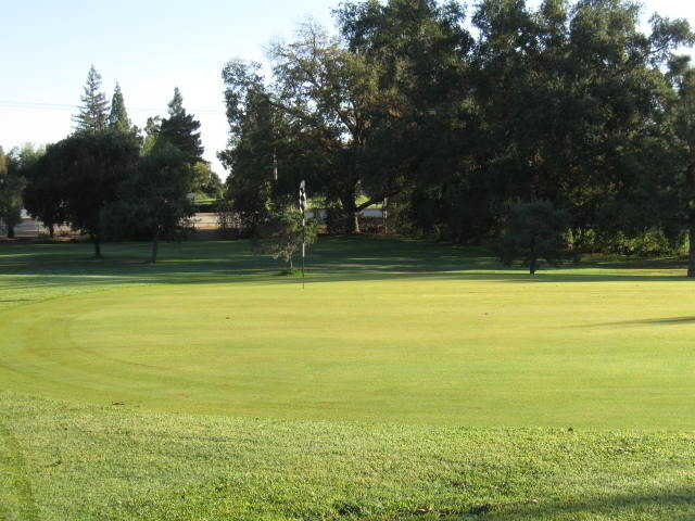 A view of green at Foothill Golf Course
