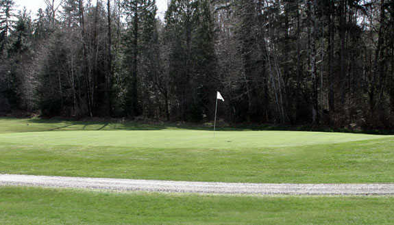 A view of the 8th green at Lake Cushman Golf Course.