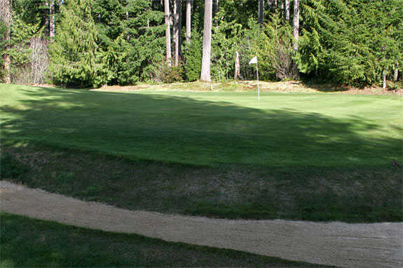 A view of the 1st hole at Lake Cushman Golf Course.
