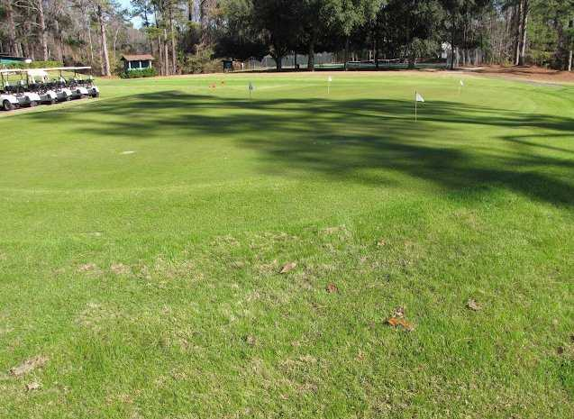 A view of the practice putting green at Dogwood Hills Golf Club