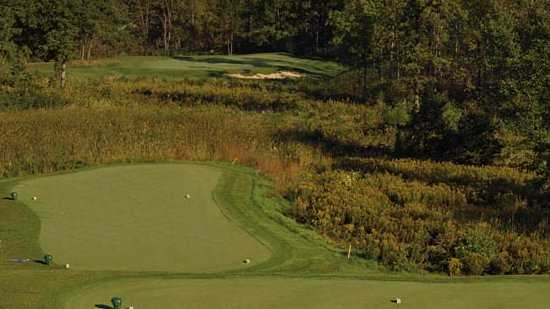 A view from the 12th tee at Fieldstone Golf Club of Auburn Hills