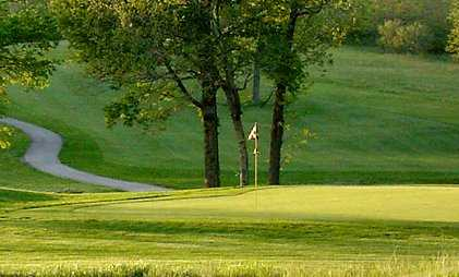 A view of a green with a narrow path on the left side at Hodge Park Golf Course.