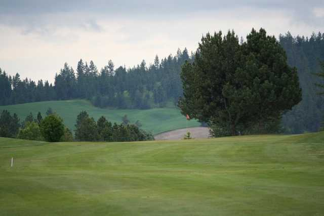 A view of fairway from Fairways Golf Course