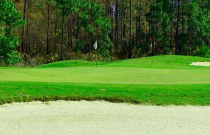 A view of a green at Magnolia Plantation Golf Club
