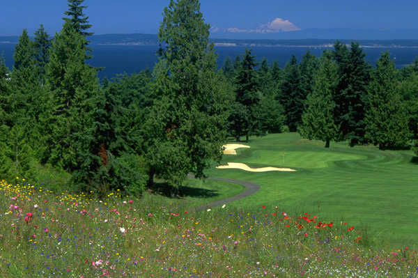 A view of a green guarded by bunkers at Port Ludlow Resort