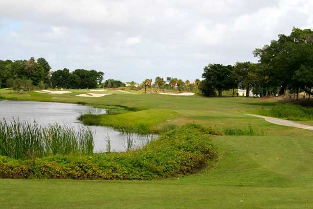 A view of the 1st hole at Davie Golf & Country Club