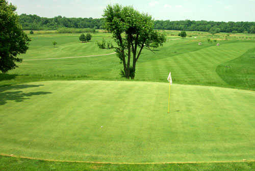 View of the 8th hole at Bluff Creek Golf Course.
