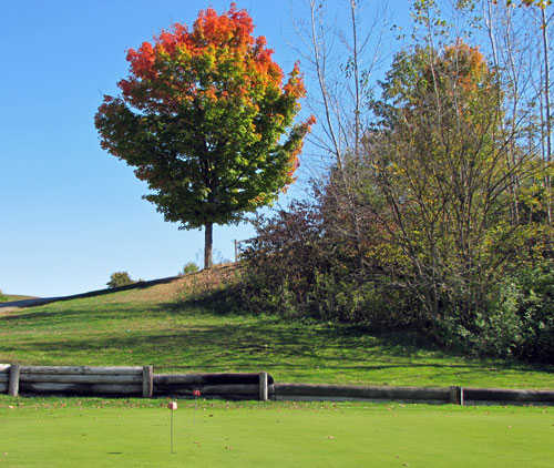 View of the puttin green at Bluff Creek Golf Course.