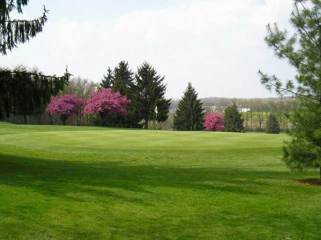 A view of a green protected by spring blossom trees at Conley Resort