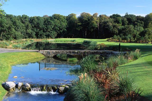 PGA National Ireland at Palmerstown House Golf Club: #3