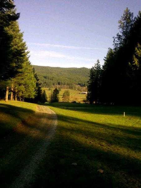 A view from Alberni Golf Club