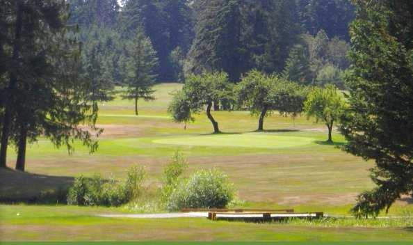 A view of a green at Alberni Golf Club