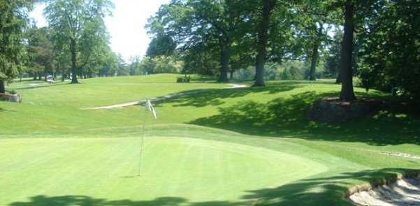 A sunny view of green at Ottawa Park Golf Course