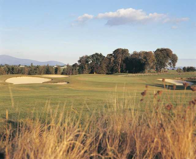 A view of the 17th hole at Gowran Park Golf and Race Course.