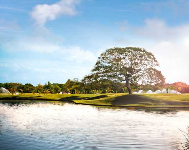 A sunny view over the water from Buenaventura Golf Club