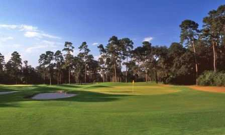 A sunny view of green at Oaks Course from The Golf Trails of The Woodlands