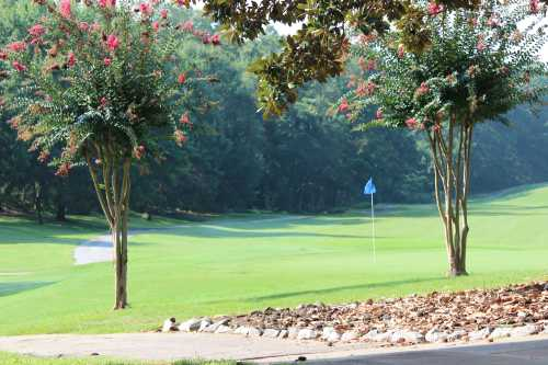 A view of a hole with a narrow path on the left at Griffin City Golf Course