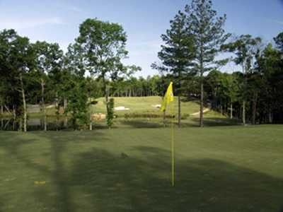 A view of a green from Arrowhead Pointe At Lake Richard B. Russell