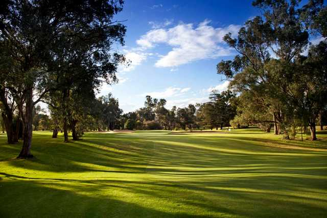 A view of the 1st hole at  Commercial Golf Resort Albury