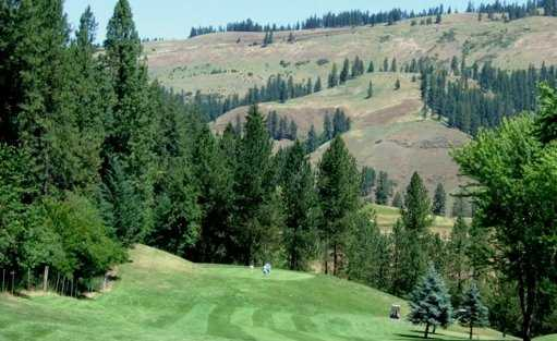 A view of a hole at Orofino Golf Course