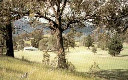 A view from Murrurundi Golf Club