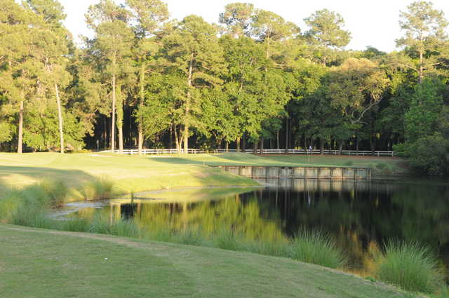 Cupp Course at Palmetto Hall: View from no. 16