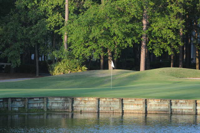 Cupp Course at Palmetto Hall: View from no. 18