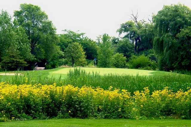 A view of the 16th green at Hilldale Golf Club